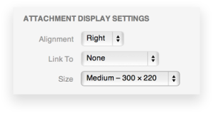attachment-display-settings